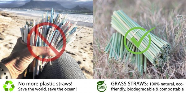 Biodegradable Straws – Grass Straws – Hay Wheat Straws 2