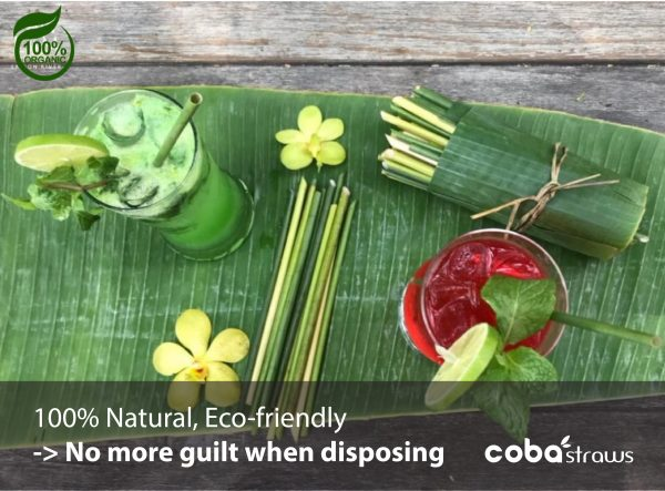 Biodegradable Straws – Grass Straws – Hay Wheat Straws – lifestyle 2ok
