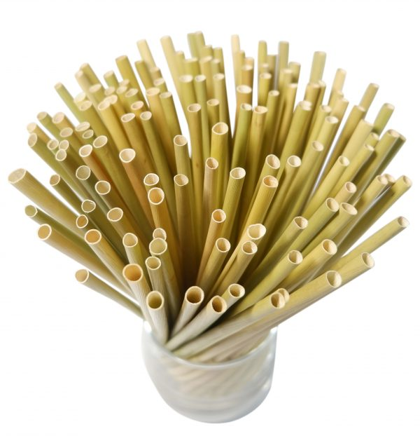 Bamboo Straws Dispostable Drinking – Grass Straws 200pcs (8)